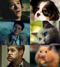 Supernatural - Sam, Castiel & Dean - hilarious :D
