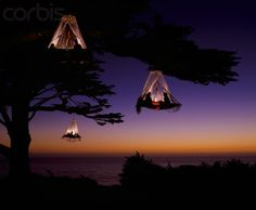 Tree camping on the Pacific Coast, Elk, California ... WOW