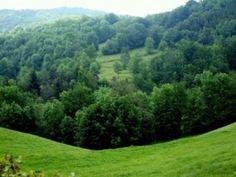 La Route des Sapins du Haut-Bugey dispose d'un cadre exceptionnel pour bon nombre de sports et loisirs. Pour les amateurs de sensations fortes, aviation légère, parapente, via ferrata, escalade, parcours aventure et parcours dans les arbres ou encore canyonning…