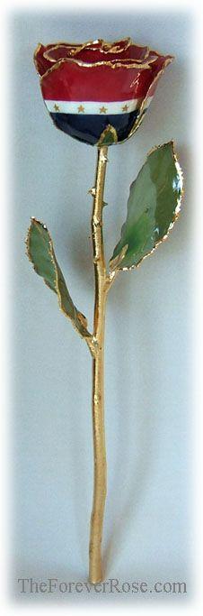 Gold Trimmed Patriot Rose - Forever Rose