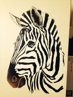 easy zebra drawings clever animals crafts uploaded