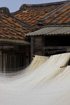 Typical Chinese farmhouse with traditional noodles made by hand and left to dry…