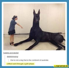 I WANT THAT DOG SO BAD. I WOULD RIDE IT INTO BATTLE OMG. But, it would probably end up destroying the entire town...