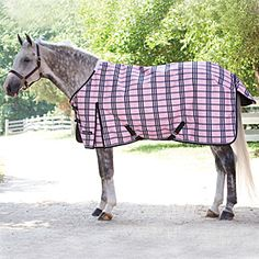 I just ordered this for Sahara because her old blanket has finally reached the end of the line. Horse blankets are pricey, but she'll look all girly & fashionable while she wears it.