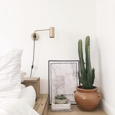 Home decor, map, cactus Instagram photo by @gemary
