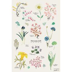Flowers #bloemen poster   Liefs van Maantje