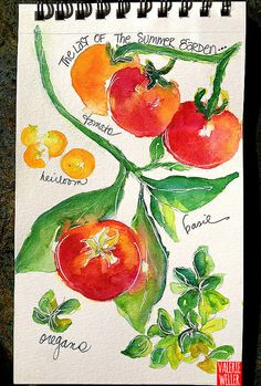 watercolor tomatoes & herbs in my sketchbook ... Valerie Weller check out a new watercolor video on my blog... http://www.twig2neststudio.blogspot.com