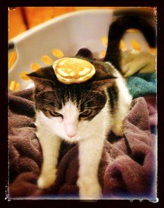 Doody Pancake