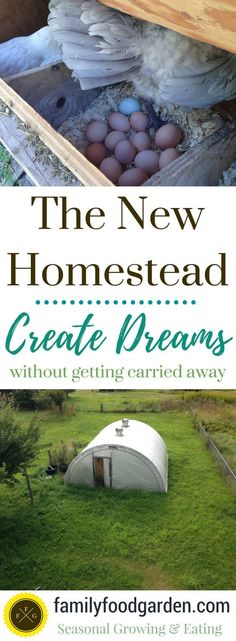 Let's look at just what is meant by permaculture, the history of this conservation movement, and meet some of its originators. Homestead Survival, Homestead Farm, Homestead Living, Farms Living, Survival Prepping, Camping Survival, Survival Skills, The Farm, Mini Farm