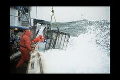 Deadliest catch Pictures