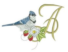 Blue Jay Alpha Embroidery Monogram, Embroidery Applique, Machine Embroidery, Embroidery Designs, Alphabet, Blue Jay, Pixies, Monograms, Color Charts