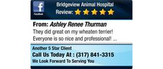 They did great on my wheaten terrier! Everyone is so nice and professional!