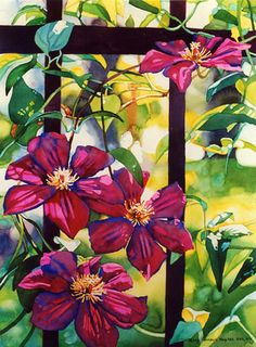 Early Morning Clematis by Mary Sorrows Hughes