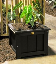 "LuxCraft Poly 24"" Square Planter Add to your outdoor decor with these lovely poly square planters. Available in a variety of colors and offering maximum durability that can handle outdoor elements."
