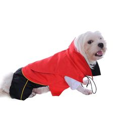 Be the star at the next fancy dress party, or just for fun at home, with Dress Your Doggy's fabulous Dracula Dog Costume! https://www.dressyourdoggy.com/collections/funny-dog-costumes/products/dracula-dog-costume?variant=32520733394