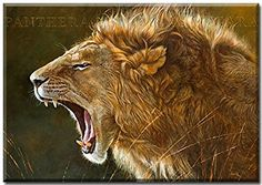 Le fils de noche Son of the Night-In-THE Lion Serengeti Framed Art Print by Renato Casaro (Digital Print on Canvas with Stretcher Frame Art Wooden Leinwandfertigbild Size: 100 CM x 70 CM Living and images, in free Animals Lion feline predators Wooden Nature