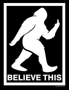I Believe Sasquatch T Shirt Bigfoot Squatchin Yhetti Big Foot Funny Yeti Tee Yeti Bigfoot, Bigfoot Sasquatch, Bigfoot Pictures, Bigfoot Pics, Funny Pictures, Funny Signs, Funny Memes, Funny Quotes, Hilarious