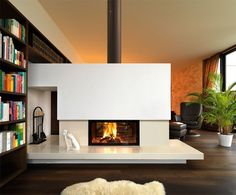 double sided glass wood burning fireplace by spartherm