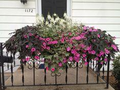 bac-a-fleurs--petnunias-garde-corps-porche