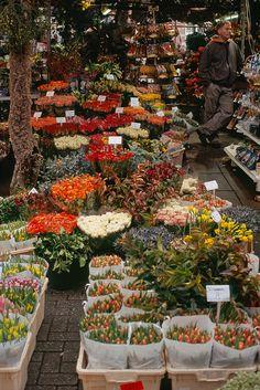Mercato dei fiori - Amsterdam