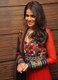 Image result for gujarati embroidery patterns