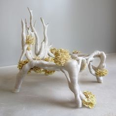 mycelium chair. I don't know the artist's name but I'm in love with their work