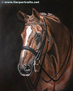I would like to introduce WASHINGTON, westfalian gelding by Weltmeyer x Florestan. Sucsessful in dressage up to level S in germany. His painting is one of three for my customer - the other one I have already shown you, is Sir Winston. The reference photo was also taken by @horseimpression   Pasteldrawing 42cm x 59cm   #westfale #wallach #chesnut #heste #paard #stefs_animalart