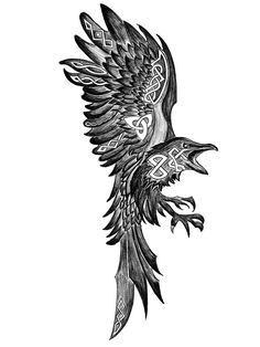 Hugin, Pencil then digital, Viking Tattoos For Men, Viking Warrior Tattoos, Rune Viking, Viking Tattoo Sleeve, Viking Tattoo Symbol, Norse Tattoo, Viking Art, Celtic Tattoos, Sleeve Tattoos