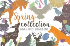 Spring collection by Julia Dreams on Creative Market