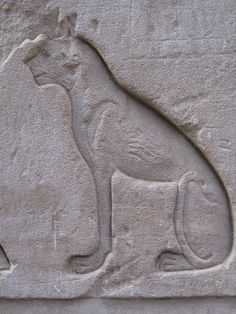 Ancient Egyptian carving of cat Bastet. Outer wall of the Temple of Horus at Edfu, Egypt. (by hewy) Egyptian Temple, Ancient Egyptian Art, Ancient History, Art History, European History, Ancient Greece, American History, Egyptian Mythology, Egyptian Goddess