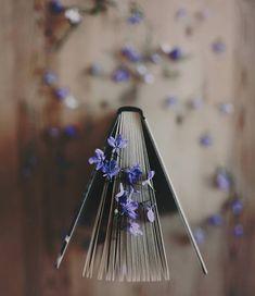 "soul-of-an-angel: ""©Vladimir Gordienko "" Book Aesthetic, Flower Aesthetic, Aesthetic Photo, Aesthetic Pictures, Aesthetic Vintage, Book Photography, Creative Photography, Photos Amoureux, Art Beauté"