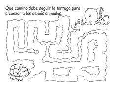 El camino de la tortuga