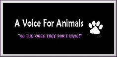 Be a voice for animals.