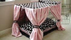 Znalezione obrazy dla zapytania Show Cat Style Cage Curtain Gallery