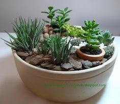 Mini jardins e terrários - cactos e suculentas: Decoração