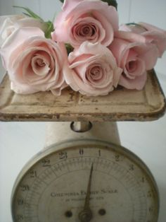 Pale pink roses sit atop this old vintage scale. Simply elegant. Place this on your dessert, cake, gift card, or guest book table for the right touch of romance.