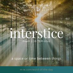 The #wordoftheday is interstice. #merriamwebster #dictionary #language