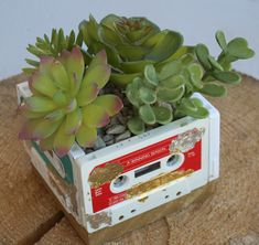 Make use of the old cassette tapes laying around in your garage and make an Old Cassette Tape Succulent Planter! This DIY succulent planter will transport you back into the 1980s with a modern kick.