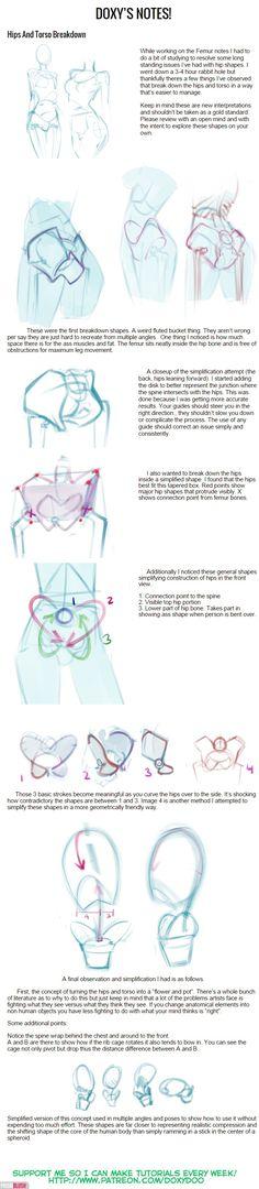Hips and Torso Breakdown by mldoxy on DeviantArt