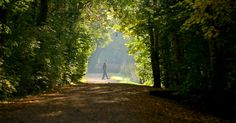 Living close to a park can add as much as £65k on to the value of your home  Mortgage Broker in Manchester - http://www.manchestermoneyman.com