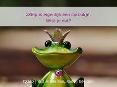 zZiep is eigenlijk een sprookje. Wist je dat?   http://www.zziep.nl/sprookje-van-zziep/24/er-was-eens?utm_content=buffer41da4&utm_medium=social&utm_source=pinterest.com&utm_campaign=buffer  zZiep.nl - Als ik het kan, kan jij het ook!