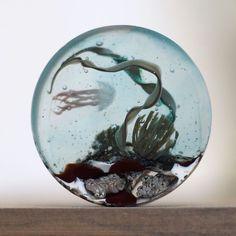 Стеклянный аквариум диаметр 30 мм #underwater #diving #jellyfish #businist