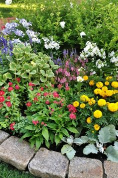 Stop Turning That Mulch To Help Keep Flowerbeds Weed Free! And finally, here might be the biggest tip of all to keep flowerbeds weed free all summer long Flower Garden Plans, Garden Yard Ideas, Garden Projects, Terrace Garden, Garden Weeds, Succulents Garden, Planting Flowers, Flowers Garden, Top Flowers