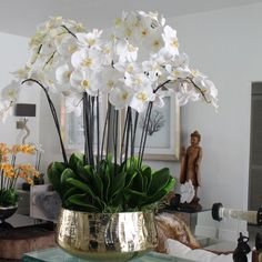 Faux Flowers Everly Quinn Phalaenopsis Orchids Floral Arrangement and Centerpiece in Planter Size: 3 Hortensien Arrangements, Orchid Flower Arrangements, Silk Flower Centerpieces, Peonies Centerpiece, White Orchid Centerpiece, Silk Orchids, Phalaenopsis Orchid, Faux Flowers, Silk Flowers