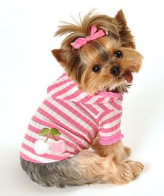 pink & White Stripe Cherry Hoodie for Dogs