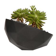 Small Geo Planter by Kelly Lamb