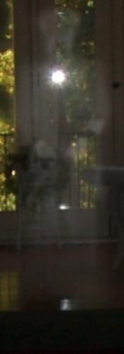 Ghost Pictures: Soldier Apparition Ghost Picture