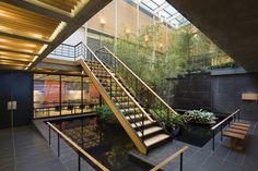 Architectural gardening - Japan Society Gallery. Photo: Peter Aaron/Estro.