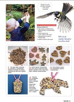 Discover recipes, home ideas, style inspiration and other ideas to try. Beading For Kids, Bird Feeders, Diy And Crafts, Life Hacks, Education, Children, School, Winter, Christmas