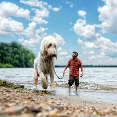 Larger-Than-Life Fairy 'Tail': Minnesota Man Becomes Famous For His Giant Dog Adventure Pics | People